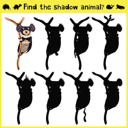 marsupial: Childrens developing game to find an appropriate shadow marsupial animal koalas on the tree. Vector illustration