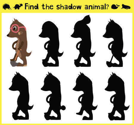 animal mole: Childrens developing game to find an appropriate shadow of the animal the mole. Vector illustration