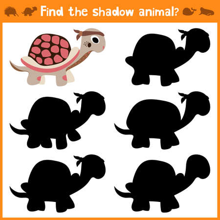 appropriate: Cartoon vector illustration of education will find appropriate shadow silhouette animal turtle. Matching game for children of preschool age. Vector