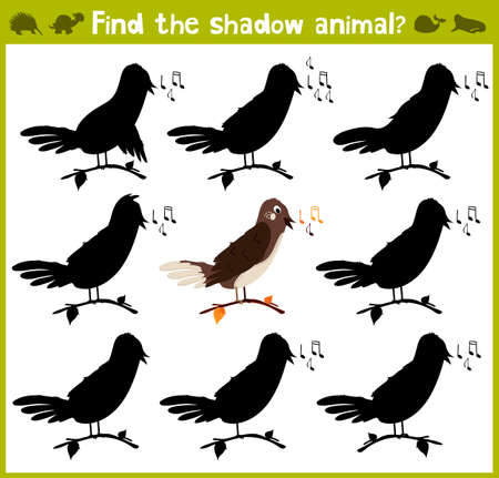 logic: Educational game for children of kindergarten and school age on the development of logic. Nightingale forest bird. Vector illustration