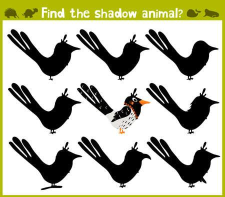 logic: Educational game for children of kindergarten and school age on the development of logic. Forty wild bird. Vector illustration Illustration