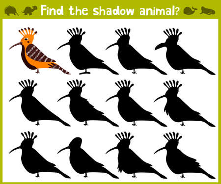 school age: Educational game for children of kindergarten and school age on the development of logic. Birds. Vector illustration