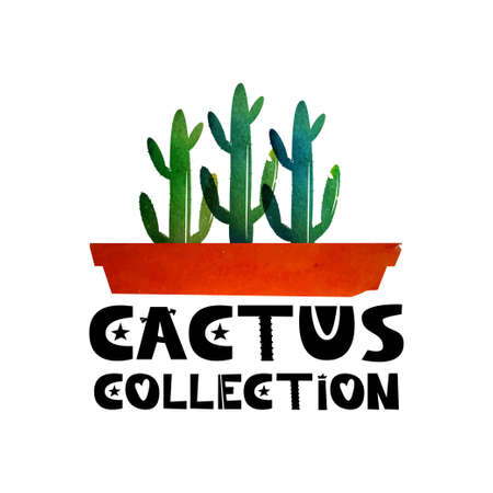types of cactus: Cute lettering text Collection of cacti. Logo for advertising shops specializing in the cacti. Cactus in a pot. Watercolor background. Vector illustration