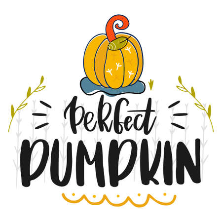 Perfect pumpkin. Hand drawn vector illustration. Autumn color poster. Good for scrap booking, posters, greeting cards, banners, textiles, gifts, shirts, mugs or other gifts. Vector Vettoriali