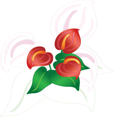 Abstract flowers on white, vector illustration  Vector