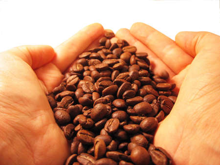 Coffee beans in hands photo