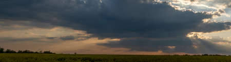 Panorama background of dramatic cloud scape, morning mist over the field. Sun rays through the clouds