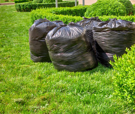fresh grass clippings in bags on green grass . garbage bag on lawn Stock fotó