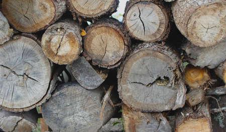 Close up of wood log stack