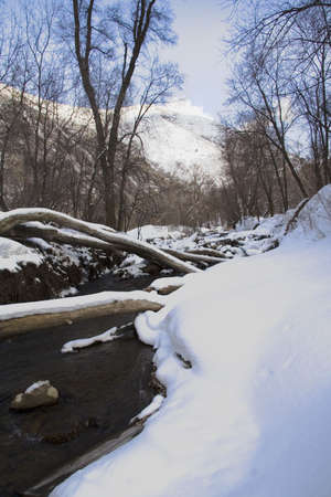 bridging: Snowy river scene with logs bridging over the water.