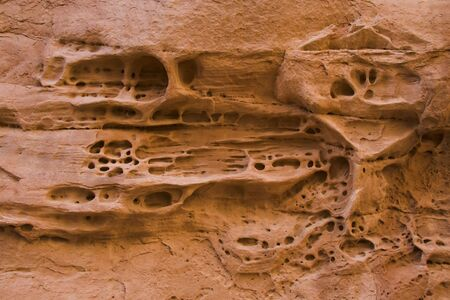 spongy: Spongy texture on rocks in Arches National Park, Utah, USA