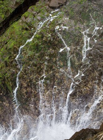 trickling: Water running down rocks like veins after a water eruption from a blow hole