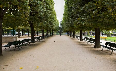 Gardens adn park behind Notre Dame Cathedral in Paris, France photo