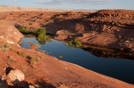 lake powell: Beautiful desert landscape scene at Lake   Powell in Glen Canyon National Recreation   Area, Utah, USA