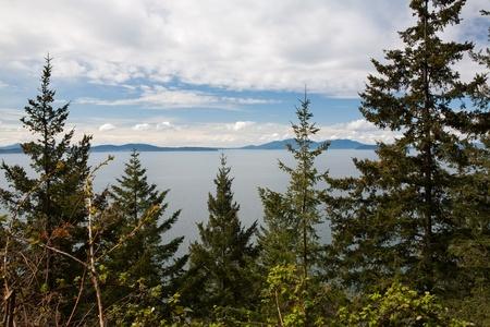 puget sound: Guardando attraverso gli alberi in Puget Sound, con le montagne sullo sfondo Archivio Fotografico