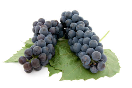 Dark grape with leaf isolated over white background photo