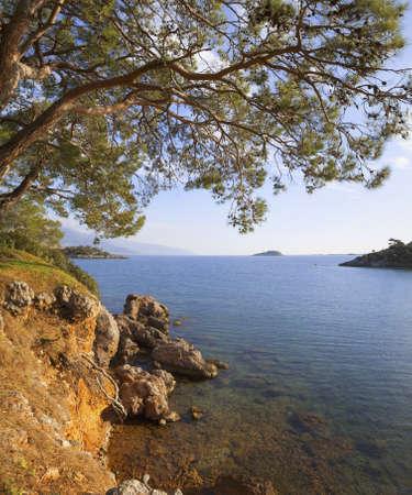 seawater: Turkey, sea, pine and sea