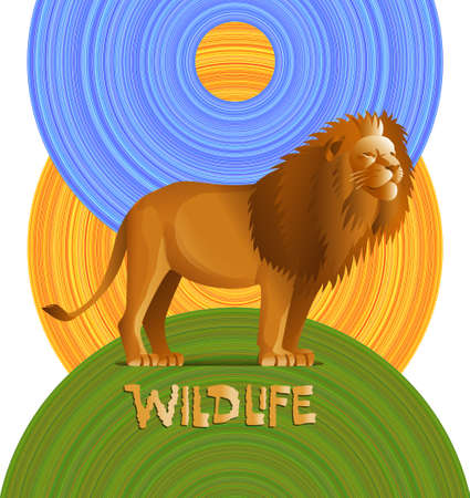 tawny: Lion on a green hill, blue sky and sun. Vector illustration. Illustration