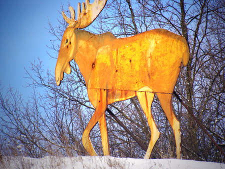 The Elk was made of sheet metal and used as a target Stock fotó