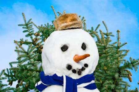 Portrait snowman on background of the fir and sky Stock Photo - 5053365