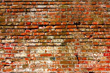 Brick wall as a backdrop Stok Fotoğraf