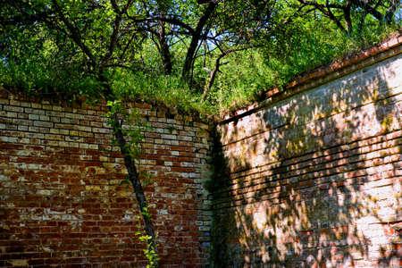 Brick wall corner as a backdrop photo