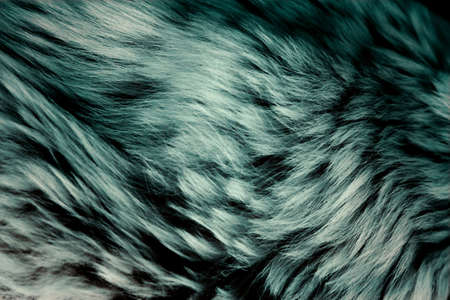 Animal fur as a background