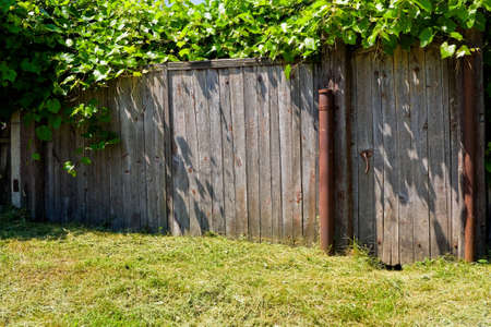 Old wooden rural gate overgrown grapes Stock Photo - 5424509