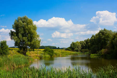 Countryside landscape with little lake and sky Stock Photo - 5464696