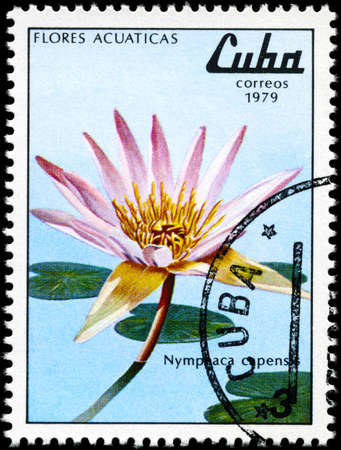 CUBA - CIRCA 1979: A Stamp shows image of a Nymphaea with the inscription Nymphaca capensis, from the series aquatic flowers, circa 1979 photo