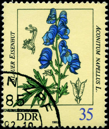 phytology: GDR - CIRCA 1982: A Stamp shows image of a Aconite with the inscription Aconitum napellus L., series, circa 1982 Stock Photo