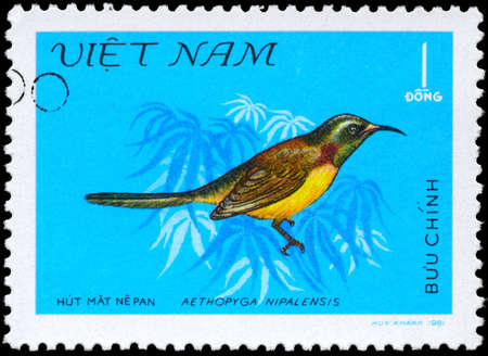 VIETNAM - CIRCA 1981: A Stamp shows image of a Bird with the inscription