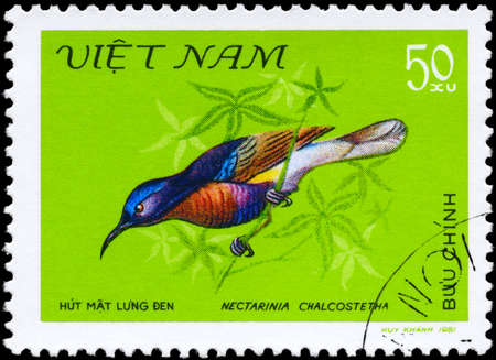 VIETNAM - CIRCA 1981: A Stamp shows image of a Bird with the inscription Nectarinia chalcostetha from the series Nectar-sucking Birds, circa 1981 photo