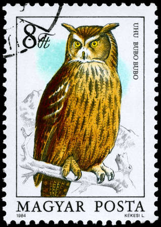 HUNGARY - CIRCA 1984: A Stamp shows image of a Eurasian Eagle-owl with the inscription Bubo bubo from the series Owls, circa 1984 photo