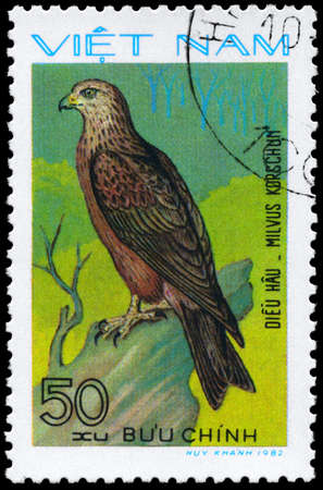 VIETNAM - CIRCA 1982: A Stamp shows image of a Black Kite with the inscription