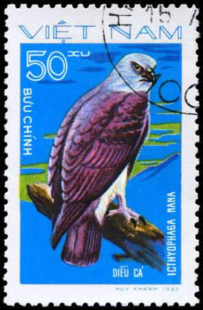 VIETNAM - CIRCA 1982: A Stamp shows image of a Eagle with the inscription
