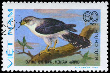 VIETNAM - CIRCA 1982: A Stamp shows image of a Neohierax with the inscription