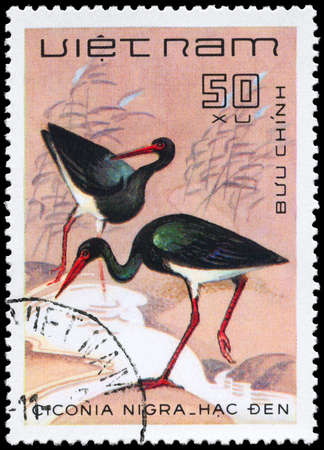 VIETNAM - CIRCA 1983: A Stamp shows image of a Black Stork with the inscription