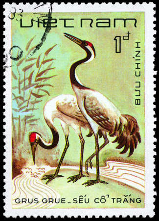 VIETNAM - CIRCA 1983: A Stamp shows image of a Cranes with the inscription