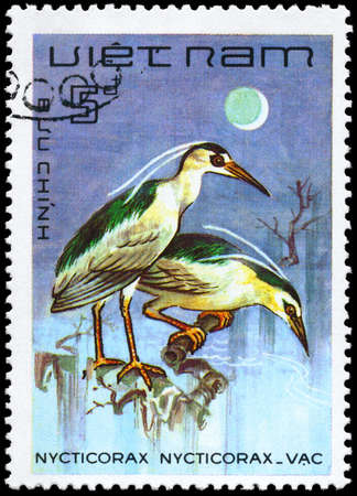 VIETNAM - CIRCA 1983: A Stamp shows image of a Black-crowned Night Heron with the inscription