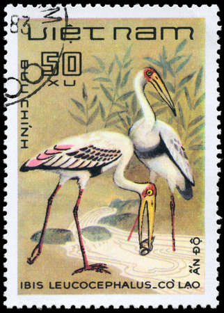 VIETNAM - CIRCA 1983: A Stamp shows image of a Painted Stork with the inscription