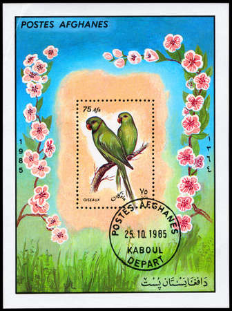 AFGHANISTAN - CIRCA 1985: A Stamp sheet shows image of a Parrots, circa 1985 photo