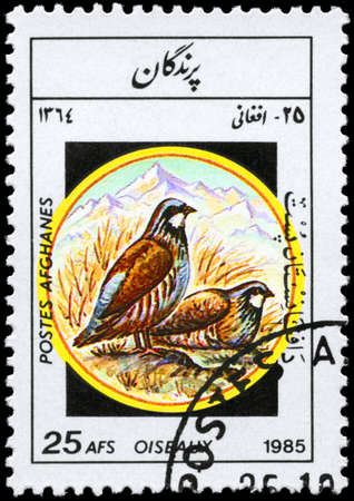 AFGHANISTAN - CIRCA 1985: A Stamp shows image of a Partridges Stock Photo - 8880379