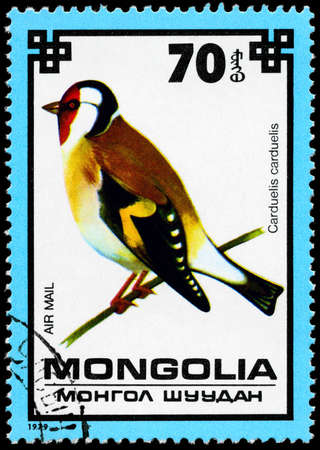 MONGOLIA - CIRCA 1979: A Stamp shows image of a Goldfinch  photo
