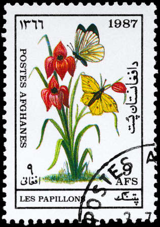AFGHANISTAN - CIRCA 1987: A Stamp printed in AFGHANISTAN shows image of a Butterflies by Flower, series, circa 1987 photo