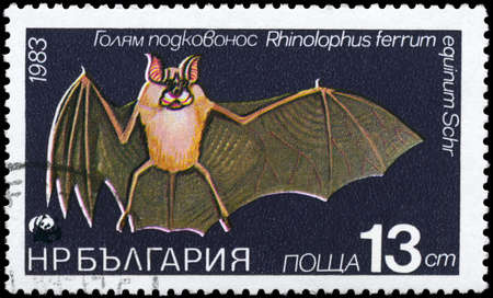 BULGARIA - CIRCA 1983: A Stamp printed in BULGARIA shows image of a Horseshoe Bat with the description Rhinolophus ferrum from the series Various bats and rodents, circa 1983 photo