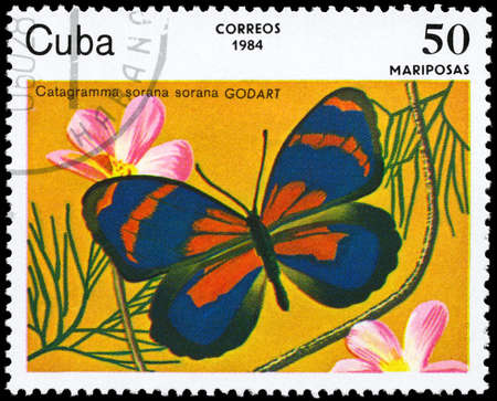 cuba butterfly: CUBA - CIRCA 1984: A Stamp printed in CUBA shows image of a Butterfly with the description Catagramma sorana, series, circa 1984