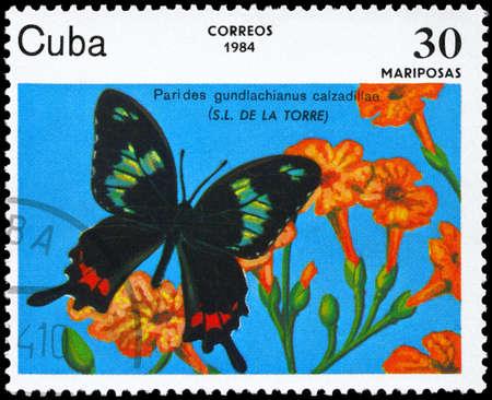 cuba butterfly: CUBA - CIRCA 1984: A Stamp printed in CUBA shows image of a Butterfly with the description Parides gundlachianus calzadillae, series, circa 1984