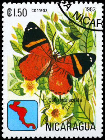 NICARAGUA - CIRCA 1982: A Stamp printed in NICARAGUA shows image of a Butterfly with the description Callizona acesta, series, circa 1982  photo
