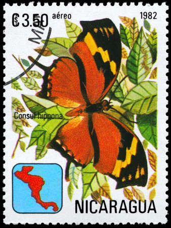 NICARAGUA - CIRCA 1982: A Stamp printed in NICARAGUA shows image of a Butterfly with the description Consul hippona, series, circa 1982  photo